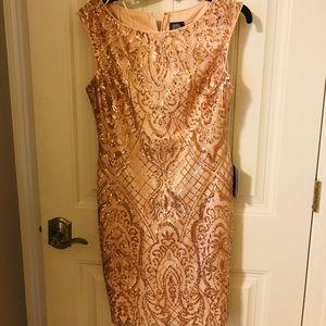 Vince Camuto Dress (Rose Gold)